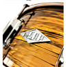 Snare Revelation finish Alice Copper - 2